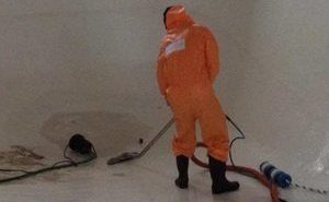 disaster restoration upper marlboro clean up