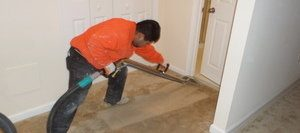 Mold Cleanup Tech Removing Water From Carpet